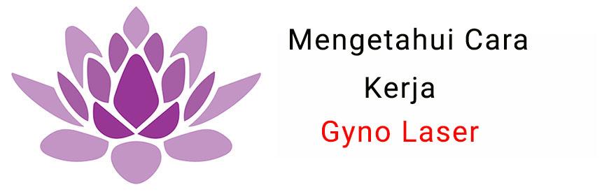 gyno-laser02